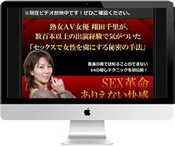 翔田千里パーフェクト教材